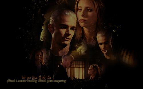 Spike/Buffy