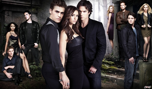 TVD_season 2 promo pic HQ - paul-wesley Photo