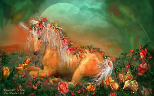 funkyrach01 wallpaper entitled Unicorn of the Roses