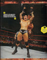wwe Magazine Superstar Yearbook 2010