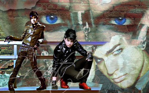 Adam Lambert wallpaper possibly containing a green beret, a rifleman, and a navy seal called adam lambert wallpaper