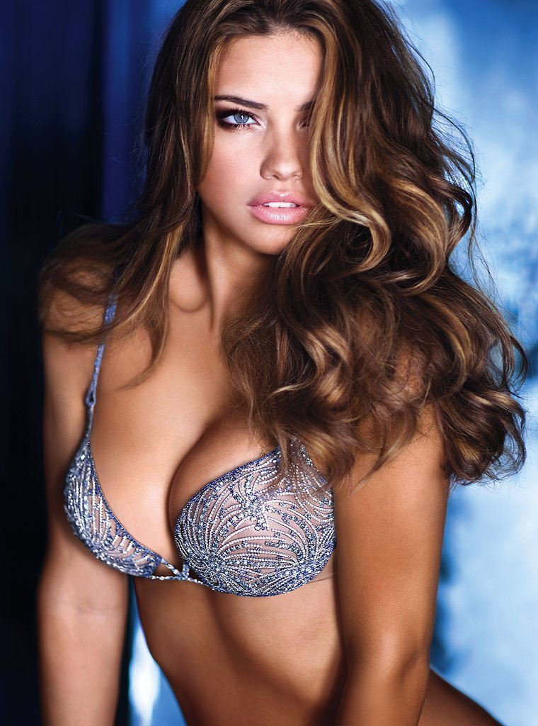 adriana - Victoria's Secret Angels Photo (16007539) - Fanpop fanclubs