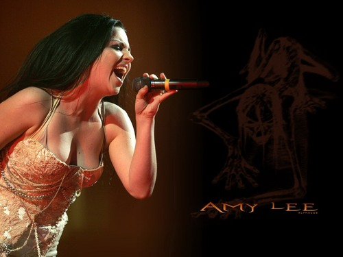 Amy Lee wallpaper entitled amy Lee