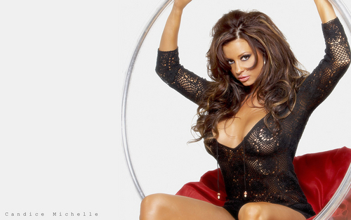 Candice Michelle fondo de pantalla possibly containing a bustier, tights, and a leotard titled candice michelle