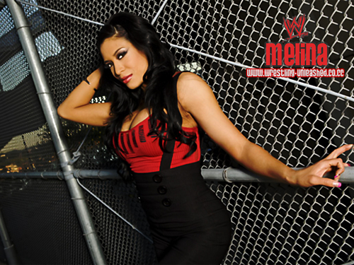 wwe divas images melina hd wallpaper and background photos