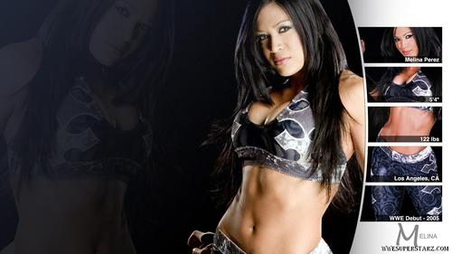 wwe divas fondo de pantalla possibly with attractiveness, an undergarment, and a ropa interior called meLina