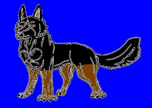 my boy friends wolg