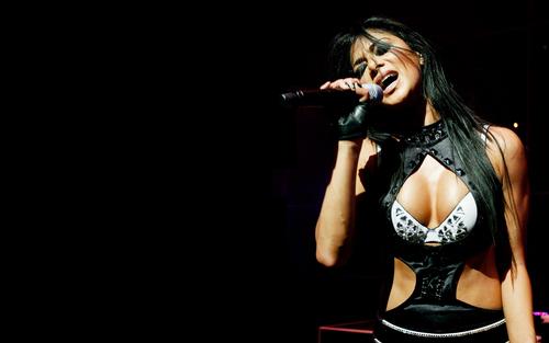 নিকোলে সোয়ারজেনেগার দেওয়ালপত্র possibly with a lingerie, attractiveness, and an undergarment titled nicoLe-