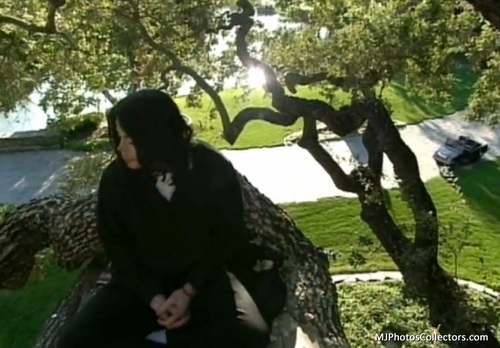 Living With Michael Jackson...love tu my ángel +.+
