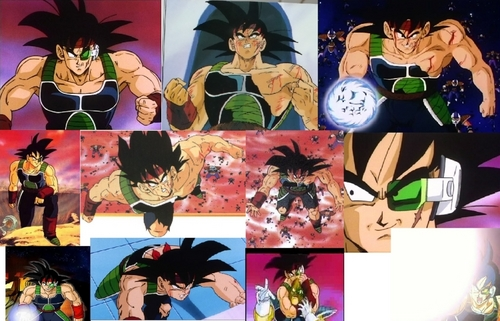 Bardock's priceless stuff