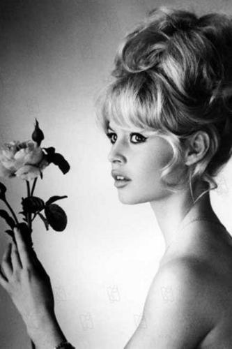 Brigitte Bardot hình nền with a bouquet called Brigitte