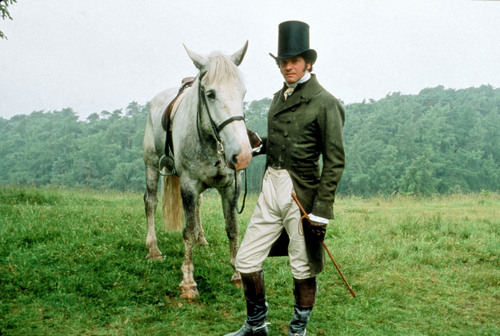 Colin Firth wallpaper containing a horse wrangler, a lippizan, and a horse trail entitled Colin Firth Pride and Prejudice Darcy