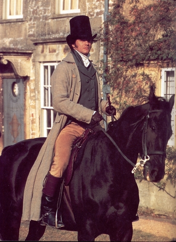 Colin Firth wallpaper with a horse wrangler, a horse trail, and a dressage entitled Colin Firth Pride and Prejudice Darcy
