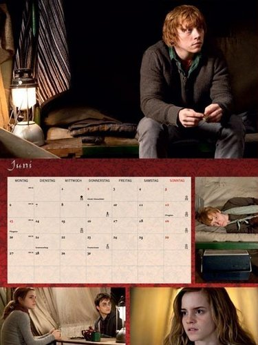 DH calendar