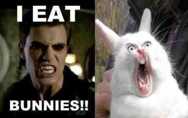I eat bunnies!