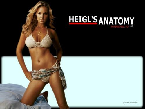 Katherine Heigl's sexy Anatomy