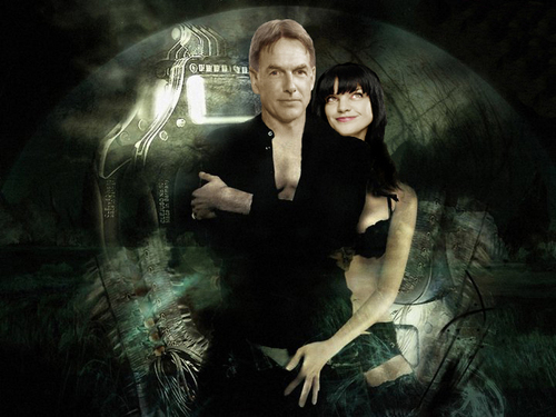 NCIS wallpaper probably containing a well dressed person entitled NCIS gabby fan art