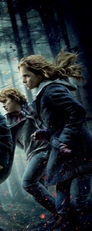 Ramione - Harry Potter & The Deathly Hallows