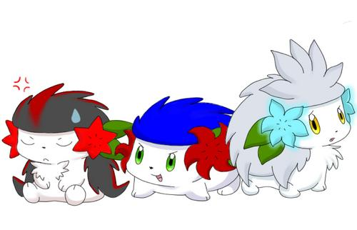 Sonic, Shadow And Silver As Shaymin