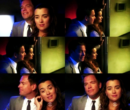 Tiva wallpaper containing a business suit called Tony & Ziva