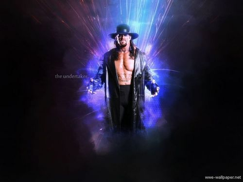 WWE wallpaper titled UNDERTAKER