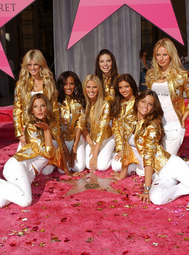 Victoria's Secret Angels - Award of Excellence
