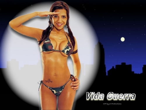 Vida Guerra's Sexy body