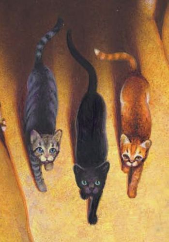 Warriors (Novel Series) Hintergrund probably with a galago, a common raccoon, and a raccoon titled hollyleaf,lionblaze, and jayfeather