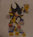 Ace.D Shadow  :D - shaclowstalker-and-silvaze_4_life fan art