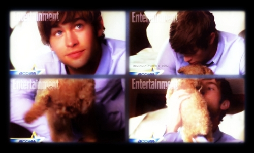 Chace with Penny! (Blake Livelys dog)