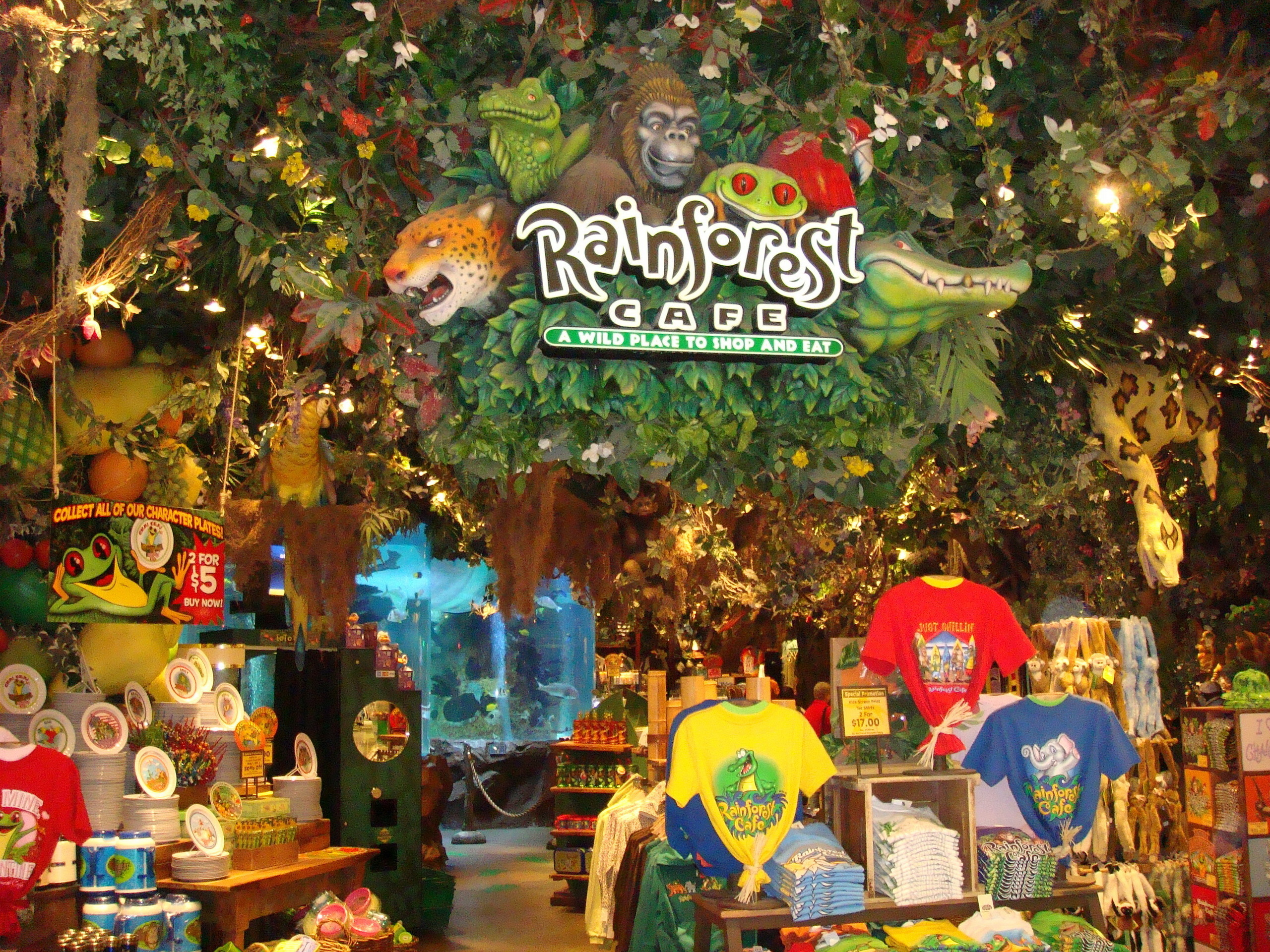 Rainforest Cafe Images Cool Gift Shop Hd Wallpaper And