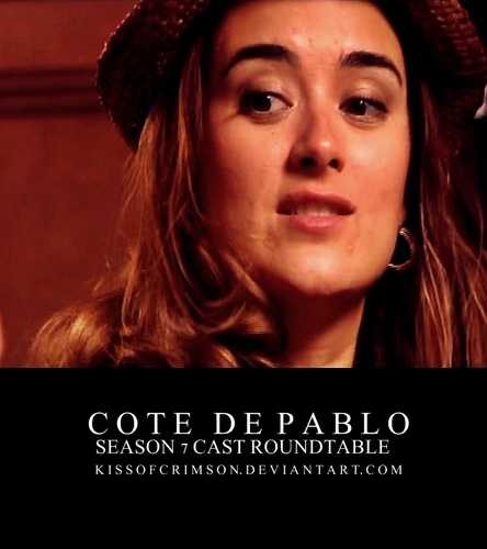 Cote S7 Cast Roundtable