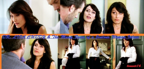 DR. LISA CUDDY & THE MANY FACES OF A JEALOUS WOMAN INLOVE