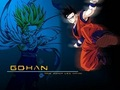 Gohan - dragon-ball-z-gt photo