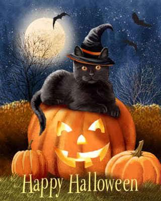 halloween cat cats fan art 16288690 fanpop. Black Bedroom Furniture Sets. Home Design Ideas