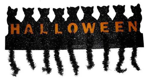halloween kucing