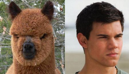 Jacob's Twin!