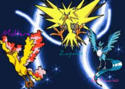 how to catch zapdos in pokemon y
