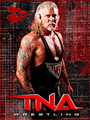 Nash - tna-wrestling photo