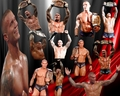 Orton new WWE Champion