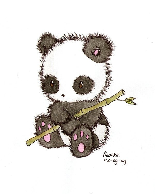 Pandas Fan Art 16256344 Fanpop