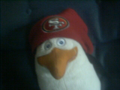 Rico's a 49ers 粉丝