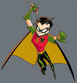 Robin - the-batman photo
