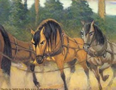 《小马王 》 壁纸 possibly containing a horse trail, a horse wrangler, and a draft horse called Spirit Concept Art