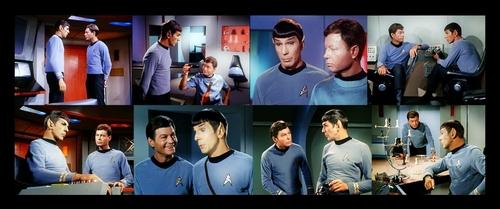 Spock and Bones Picspam