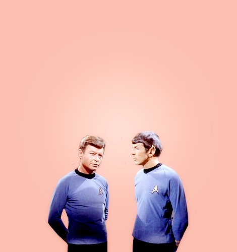 Spock and Bones - spock-and-bones Fan Art