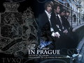 The Prince In Prague - dbsk wallpaper