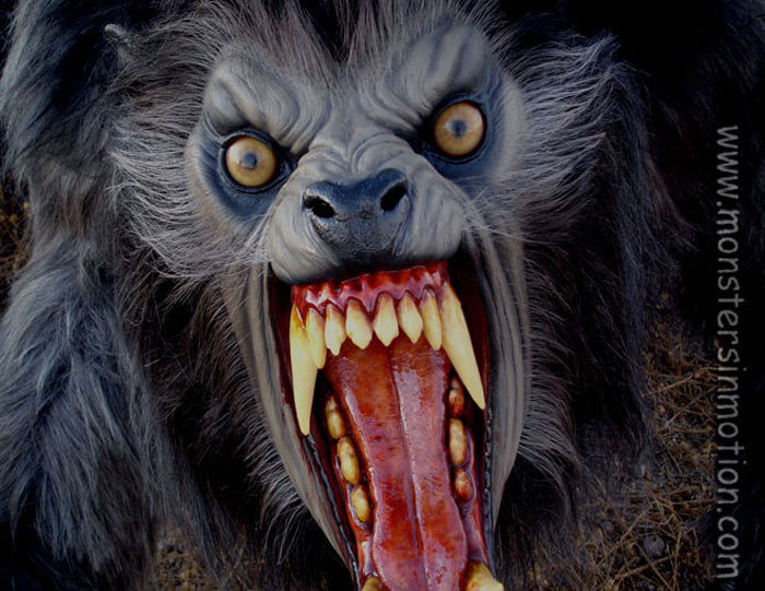Monsters Images Werewolf Wallpaper And Background Photos