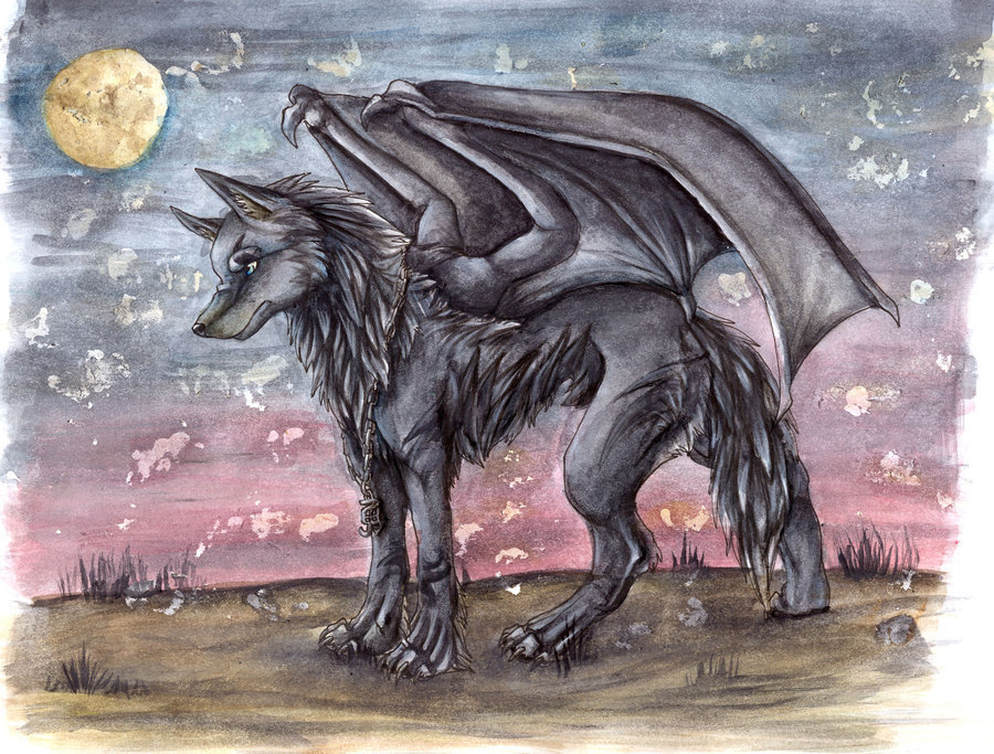 Winged wolves winged wolves