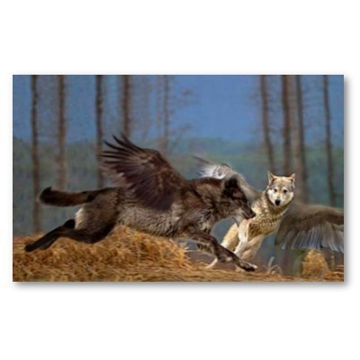 Winged Người sói